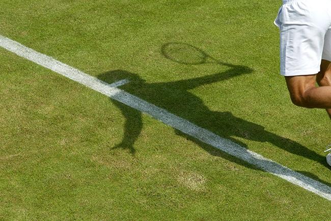 Contact Wimbledon Debentures